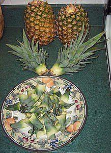 Как вырастить ананас из верхушки Image?t=0&bid=772170767929&id=772170767929&plc=WEB&tkn=*eZwBD8kNBFmf8xOwqDlc9zemYyE